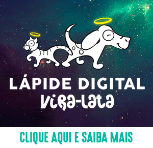 Lápide Digital