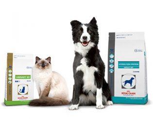 Royal Canin – Cães e Gatos bem nutridos