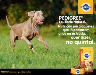 Pedigree – Cachorro é tudo de bom!