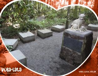 Cemitérios dos Gatos – O INDAIALENSE