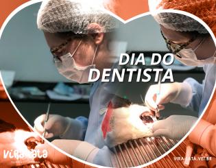 Especialidade: Odontologia Veterinária – Odonto Pet Care & Vira-Lata Clínica Veterinária