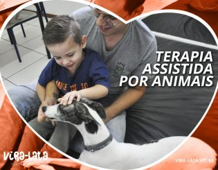 Terapia Assistida por Animas – TAA