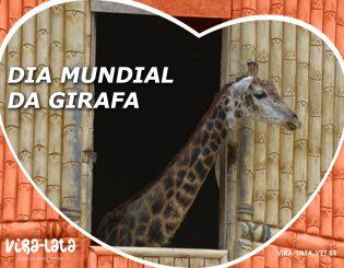 DIA MUNDIAL DA GIRAFA